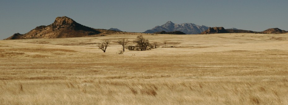 Saddle Mountain with Santa Rita Mountains in the background, San Rafael Valley, Patagonia, AZ © Glen E Goodwin